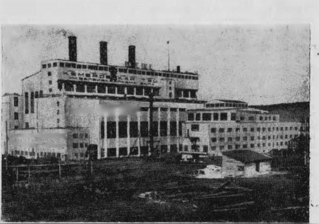 Еще в 1930 году на широкой площадке у реки Томи был пустырь. А спустя несколько лет, в 1934 году, поднялось здание мощной Кемеровской ГРЭС